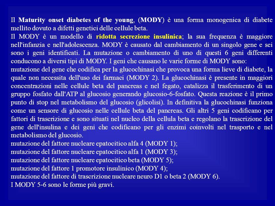 Il Maturity onset diabetes of the young, (MODY) è una forma monogenica di diabete mellito dovuto a difetti genetici delle cellule beta. Il MODY è un m