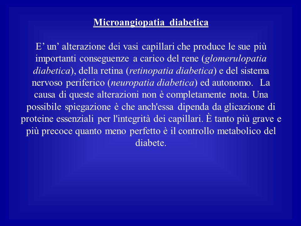 Microangiopatia diabetica E' un' alterazione dei vasi capillari che produce le sue più importanti conseguenze a carico del rene (glomerulopatia diabet