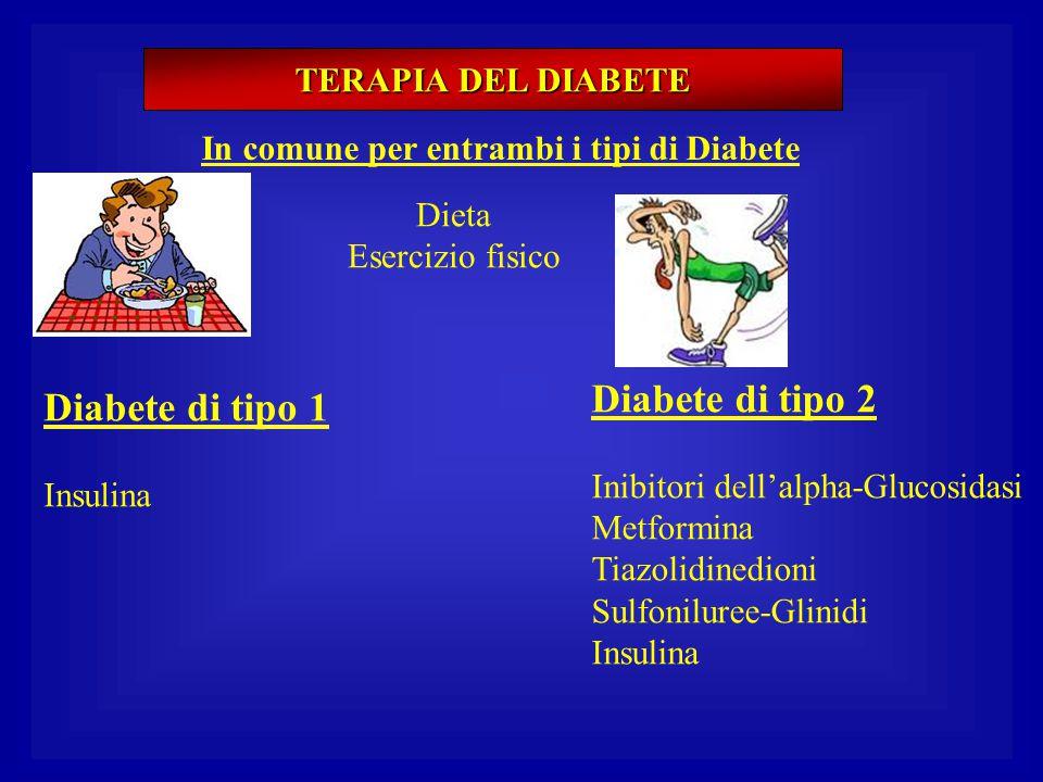 TERAPIA DEL DIABETE In comune per entrambi i tipi di Diabete Dieta Esercizio fisico Diabete di tipo 1 Insulina Diabete di tipo 2 Inibitori dell'alpha-