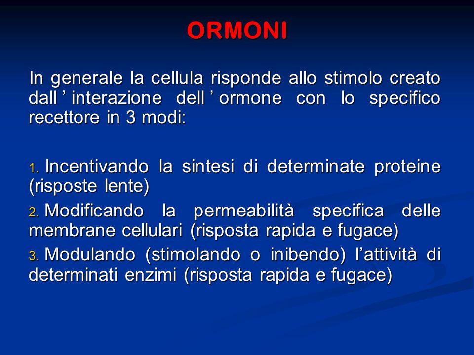 ORMONI In generale la cellula risponde allo stimolo creato dall'interazione dell'ormone con lo specifico recettore in 3 modi: 1.