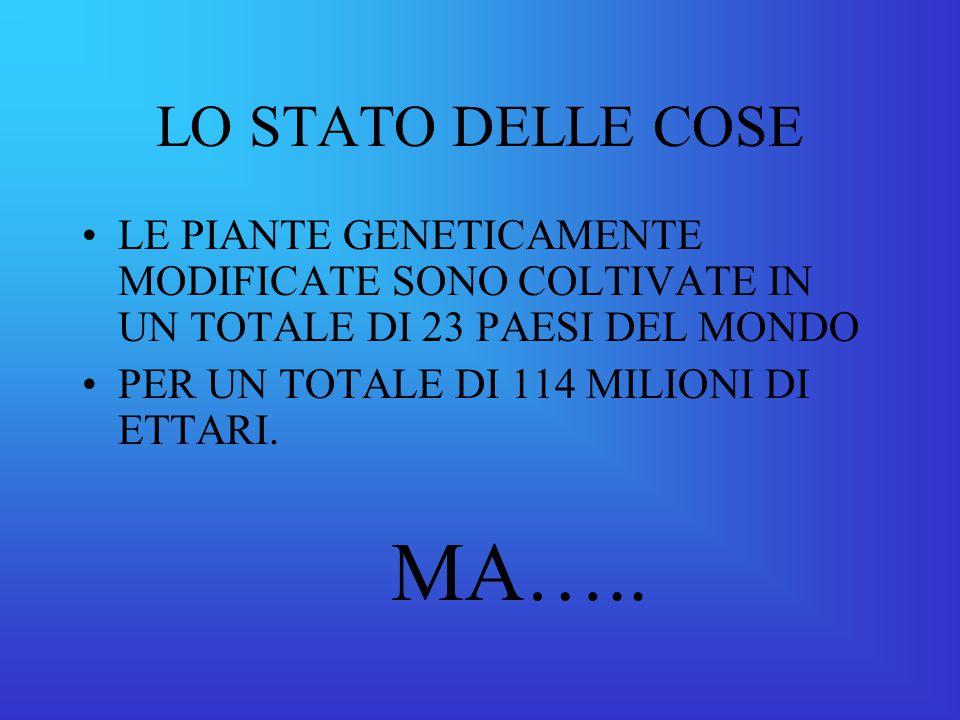 LO STATO DELLE COSE LE PIANTE GENETICAMENTE MODIFICATE SONO COLTIVATE IN UN TOTALE DI 23 PAESI DEL MONDO PER UN TOTALE DI 114 MILIONI DI ETTARI.