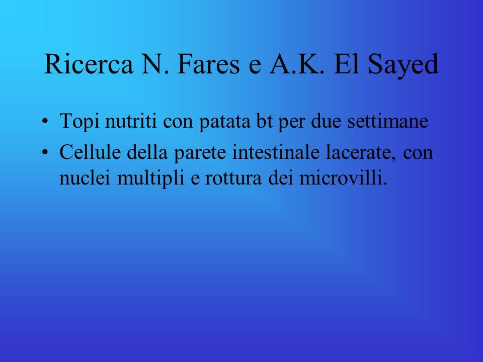 Ricerca N.Fares e A.K.