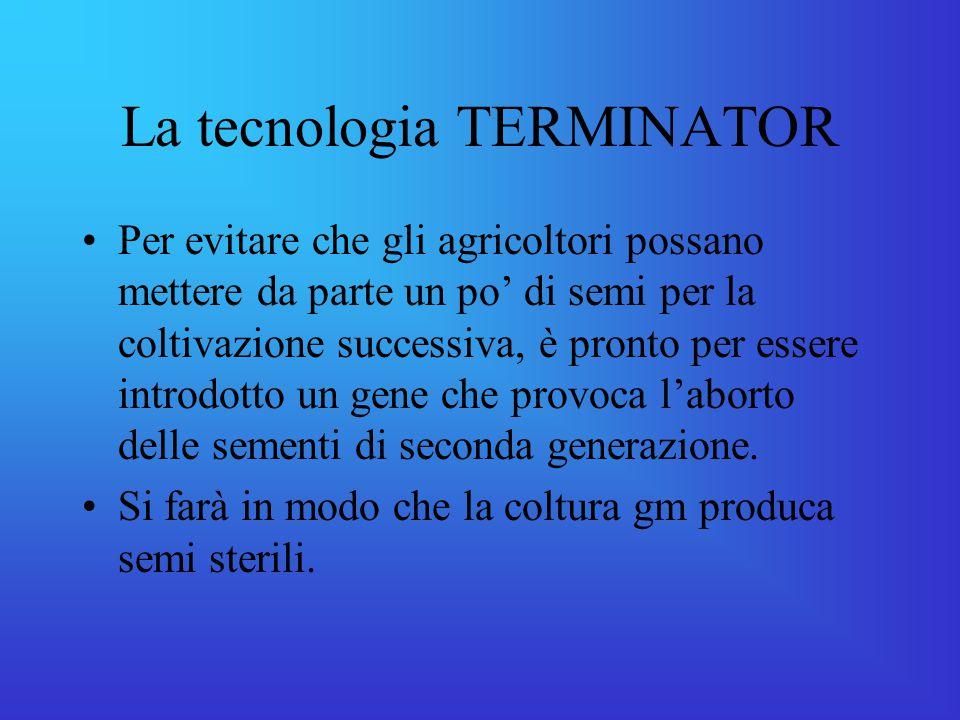 La tecnologia TERMINATOR Per evitare che gli agricoltori possano mettere da parte un po' di semi per la coltivazione successiva, è pronto per essere introdotto un gene che provoca l'aborto delle sementi di seconda generazione.