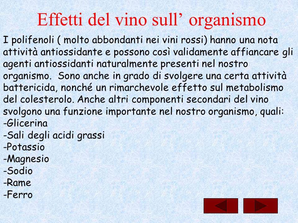 Effetti del vino sull' organismo I polifenoli ( molto abbondanti nei vini rossi) hanno una nota attività antiossidante e possono così validamente affi