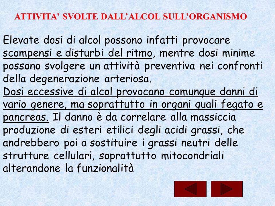 Elevate dosi di alcol possono infatti provocare scompensi e disturbi del ritmo, mentre dosi minime possono svolgere un attività preventiva nei confron