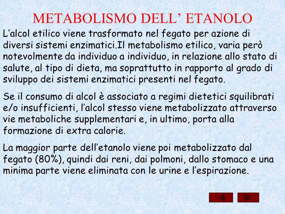 La velocità di metabolizzazione dell'etanolo varia da 60 a 200mg/Kg/ora (11ml/ora) quindi, 30mg di alcol etilico (circa 250g di vino) sono eliminati mediamente in 4 ore.