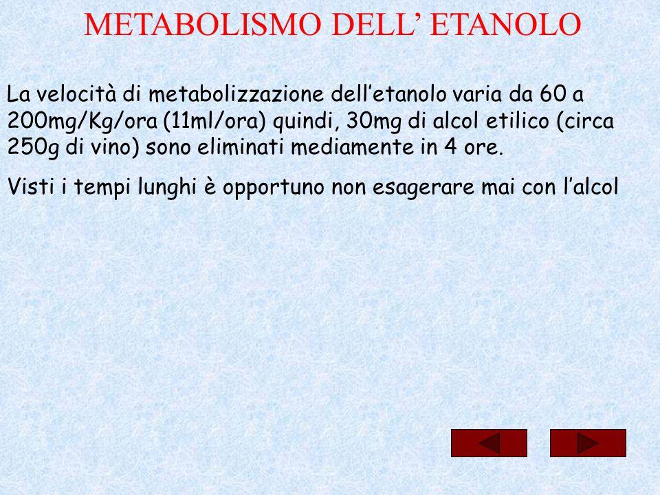 La velocità di metabolizzazione dell'etanolo varia da 60 a 200mg/Kg/ora (11ml/ora) quindi, 30mg di alcol etilico (circa 250g di vino) sono eliminati m