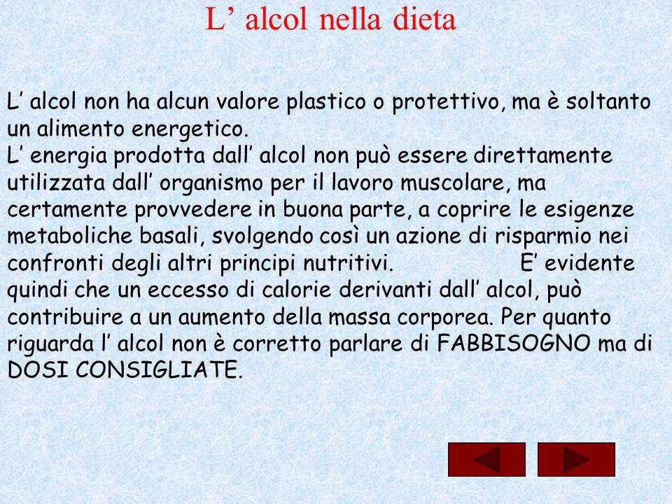 L' alcol nella dieta L' alcol non ha alcun valore plastico o protettivo, ma è soltanto un alimento energetico. L' energia prodotta dall' alcol non può