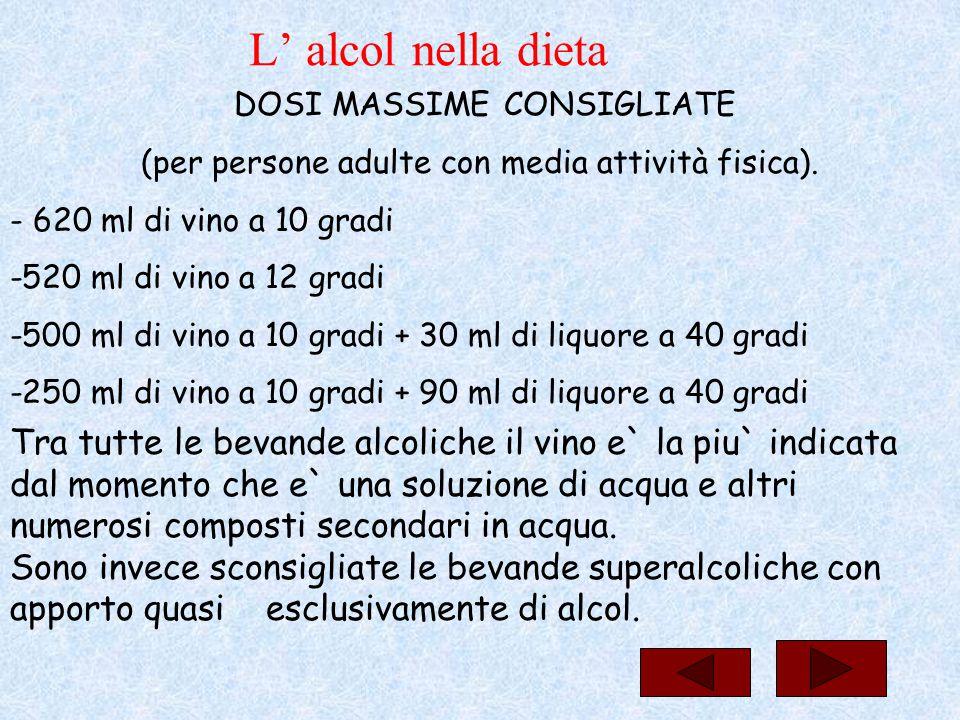L' alcol nella dieta DOSI MASSIME CONSIGLIATE (per persone adulte con media attività fisica). - 620 ml di vino a 10 gradi -520 ml di vino a 12 gradi -