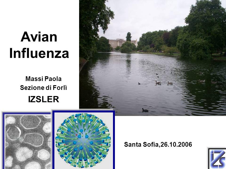 Avian Influenza Massi Paola Sezione di Forlì IZSLER Santa Sofia,26.10.2006