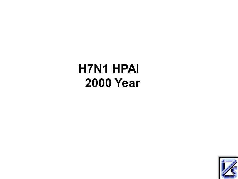 H7N1 HPAI 2000 Year