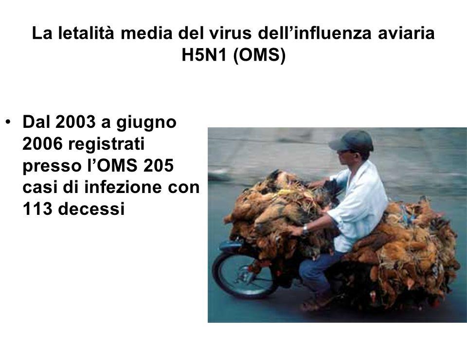 La letalità media del virus dell'influenza aviaria H5N1 (OMS) L'OIE segnala focolai epizootici negli uccelli domestici e selvatici in una cinquantina di Paesi