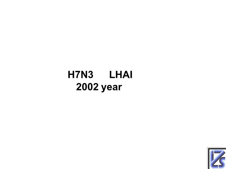 H7N3 LHAI 2002 year