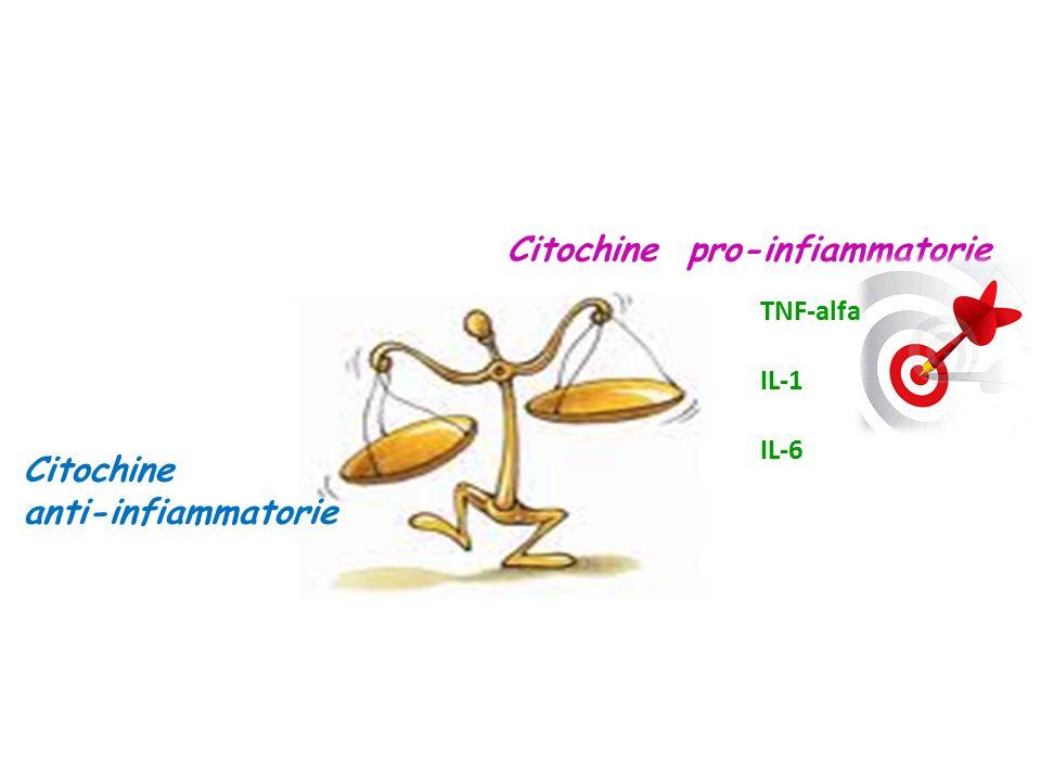 Citochine pro-infiammatorie Citochine anti-infiammatorie TNF-alfa IL-1 IL-6
