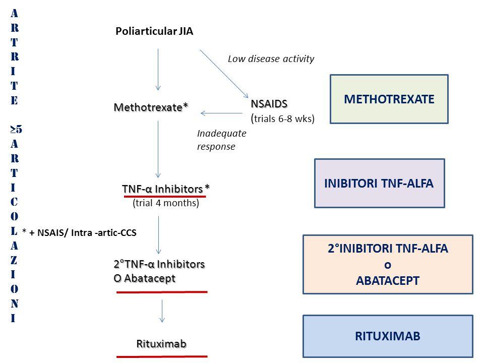 A R T R I T E ≥5 A R T I C O L A Z I O N I METHOTREXATE INIBITORI TNF-ALFA Poliarticular JIA TNF-α Inhibitors * (trial 4 months) 2°TNF-α Inhibitors O Abatacept Low disease activity Inadequate response * + NSAIS/ Intra -artic-CCS Methotrexate* Rituximab 2°INIBITORI TNF-ALFA o ABATACEPT RITUXIMAB NSAIDS ( trials 6-8 wks)