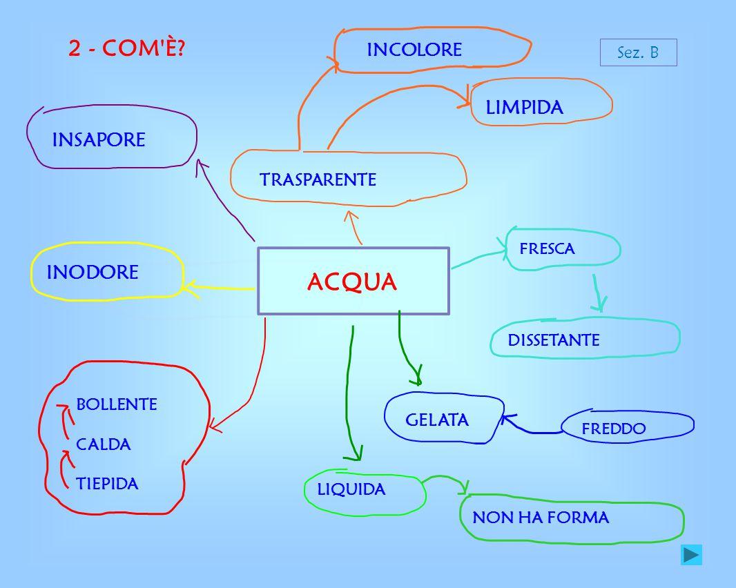 2- COM È L ACQUA.