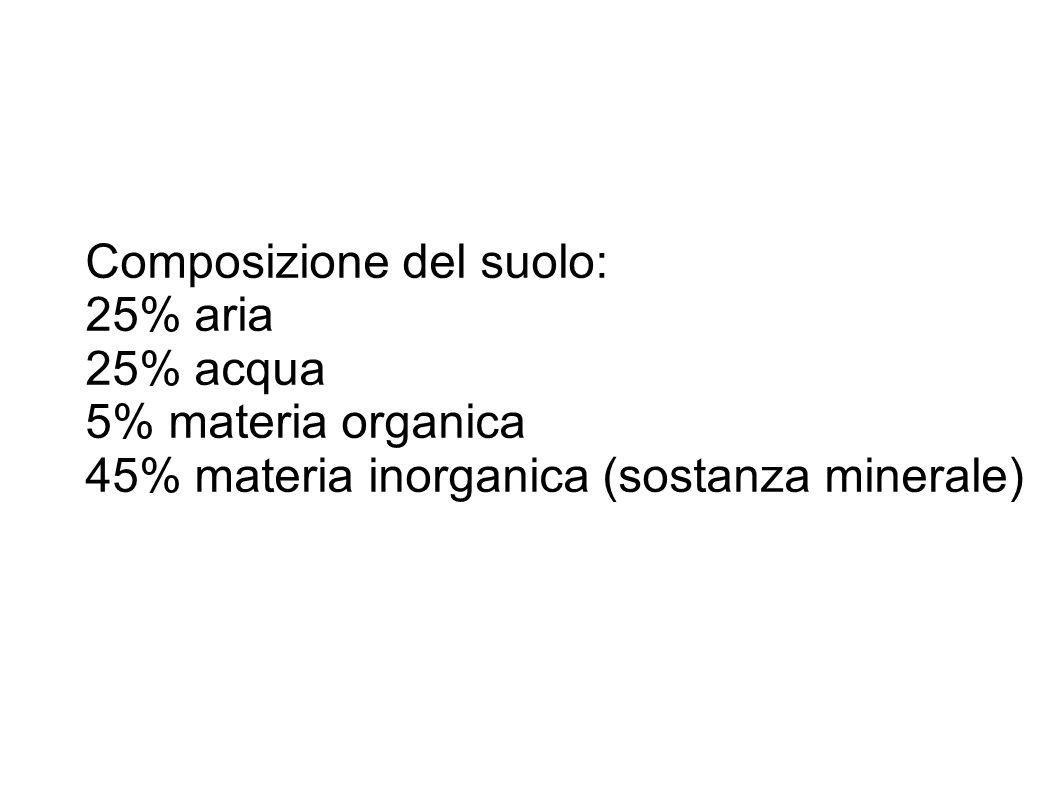 Composizione del suolo: 25% aria 25% acqua 5% materia organica 45% materia inorganica (sostanza minerale)
