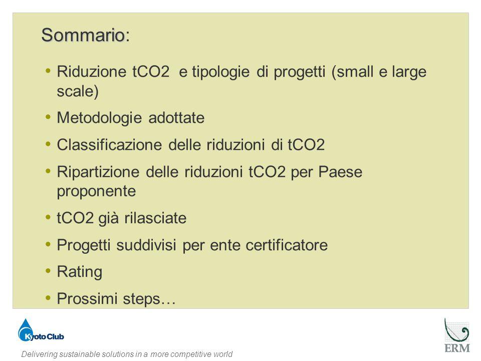 Delivering sustainable solutions in a more competitive world Riduzione tCO2 e tipologie di progetti (small e large scale)