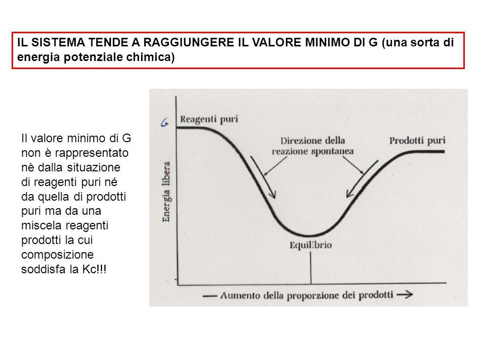 IL SISTEMA TENDE A RAGGIUNGERE IL VALORE MINIMO DI G (una sorta di energia potenziale chimica) Il valore minimo di G non è rappresentato nè dalla situ