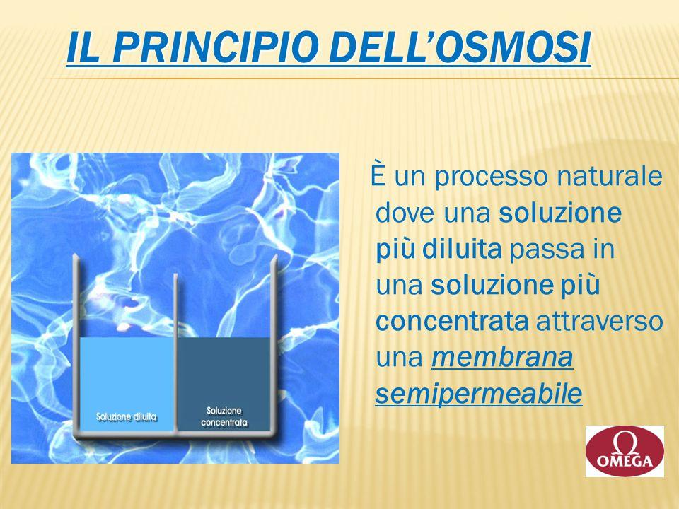 IL PRINCIPIO DELL'OSMOSI È un processo naturale dove una soluzione più diluita passa in una soluzione più concentrata attraverso una membrana semiperm