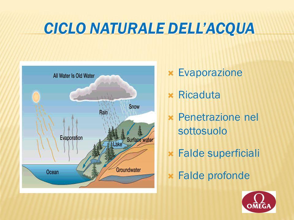 CICLO NATURALE DELL'ACQUA  Evaporazione  Ricaduta  Penetrazione nel sottosuolo  Falde superficiali  Falde profonde