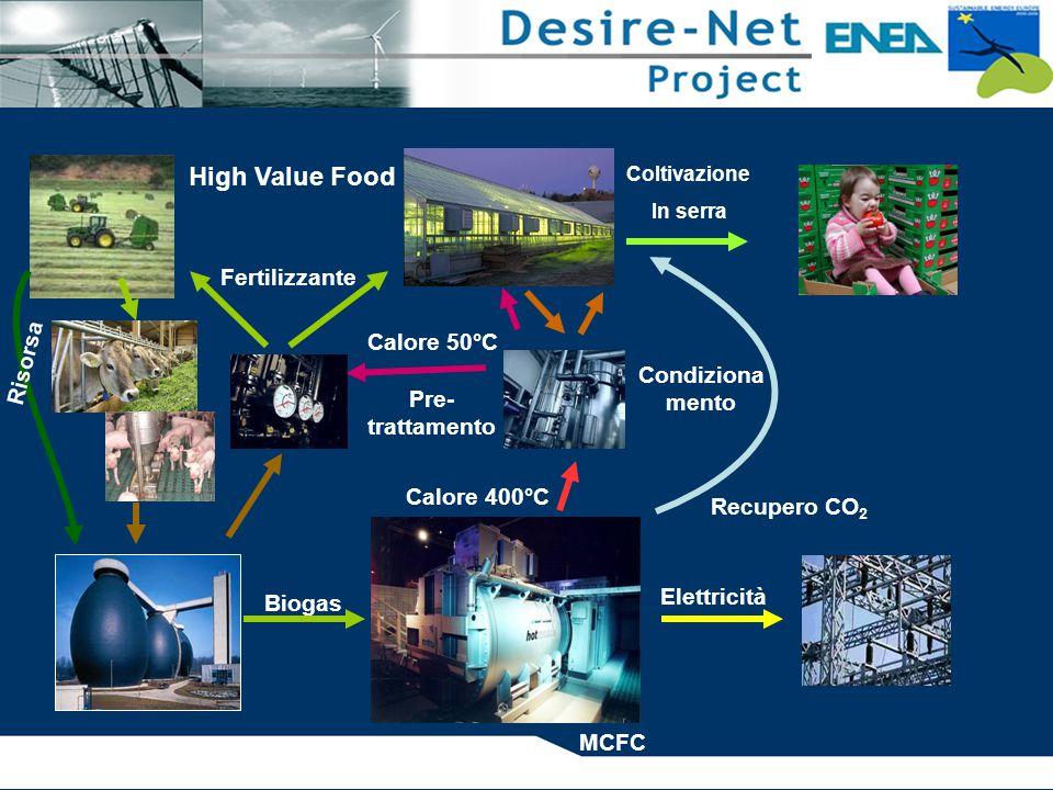 MCFC Elettricità Calore 400°C Calore 50°C Recupero CO 2 Pre- trattamento Coltivazione In serra High Value Food Fertilizzante Condiziona mento Biogas Risorsa
