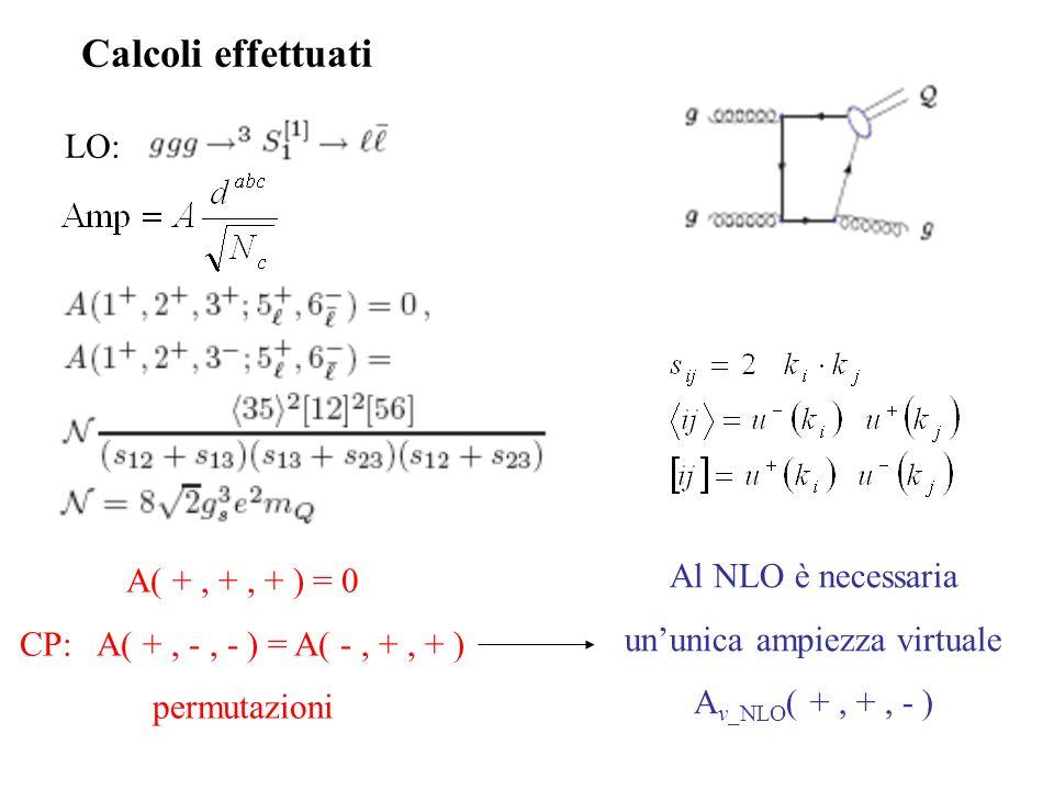 LO: Calcoli effettuati Al NLO è necessaria un'unica ampiezza virtuale A v_NLO ( +, +, - ) A( +, +, + ) = 0 CP: A( +, -, - ) = A( -, +, + ) permutazioni