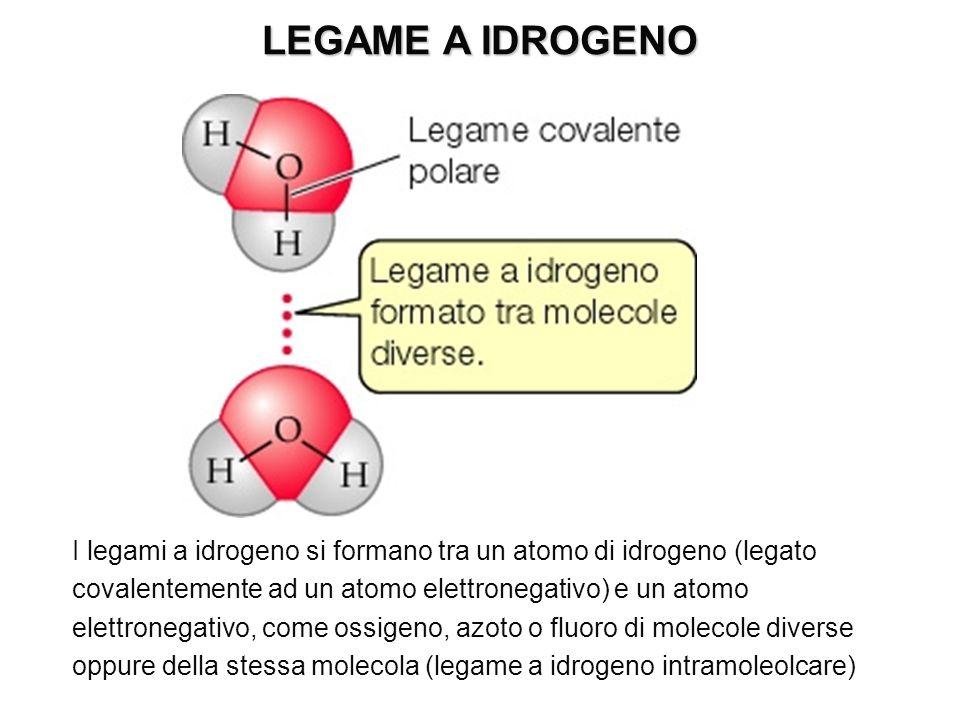 I legami a idrogeno si formano tra un atomo di idrogeno (legato covalentemente ad un atomo elettronegativo) e un atomo elettronegativo, come ossigeno,