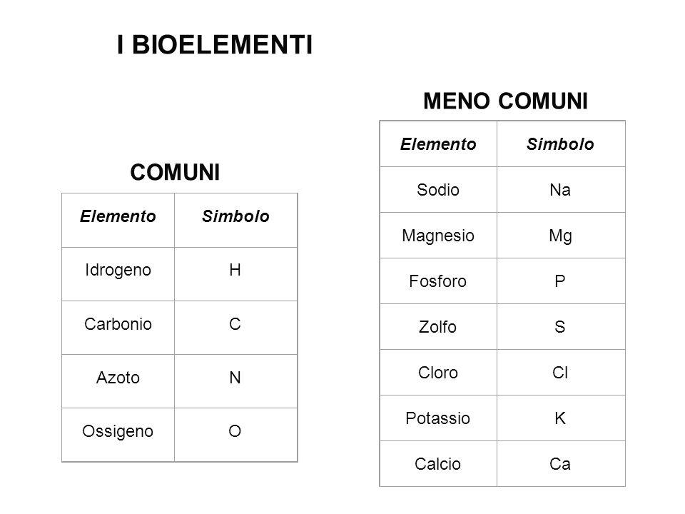 ElementoSimbolo IdrogenoH CarbonioC AzotoN OssigenoO ElementoSimbolo SodioNa MagnesioMg FosforoP ZolfoS CloroCl PotassioK CalcioCa COMUNI MENO COMUNI