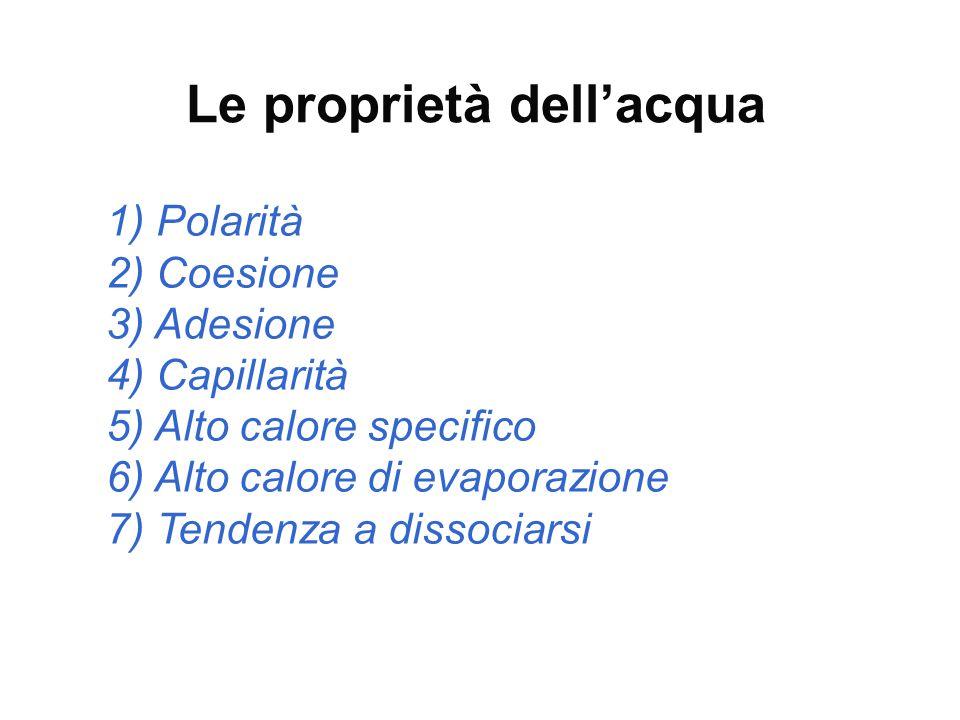 Le proprietà dell'acqua 1) Polarità 2) Coesione 3) Adesione 4) Capillarità 5) Alto calore specifico 6) Alto calore di evaporazione 7) Tendenza a disso