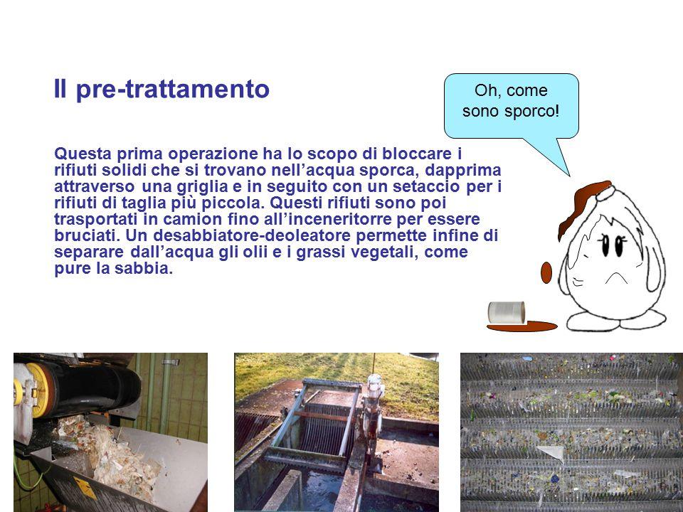 6 La sedimentazione e il trattamento biologico Le altre sostanze in sospensione formano dei fanghi che si depositano nel fondo del bacino di sedimentazione.