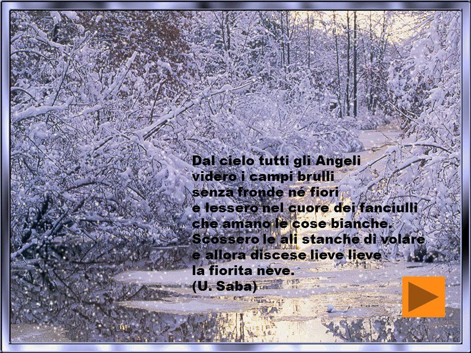 Dal cielo tutti gli Angeli videro i campi brulli senza fronde né fiori e lessero nel cuore dei fanciulli che amano le cose bianche. Scossero le ali st