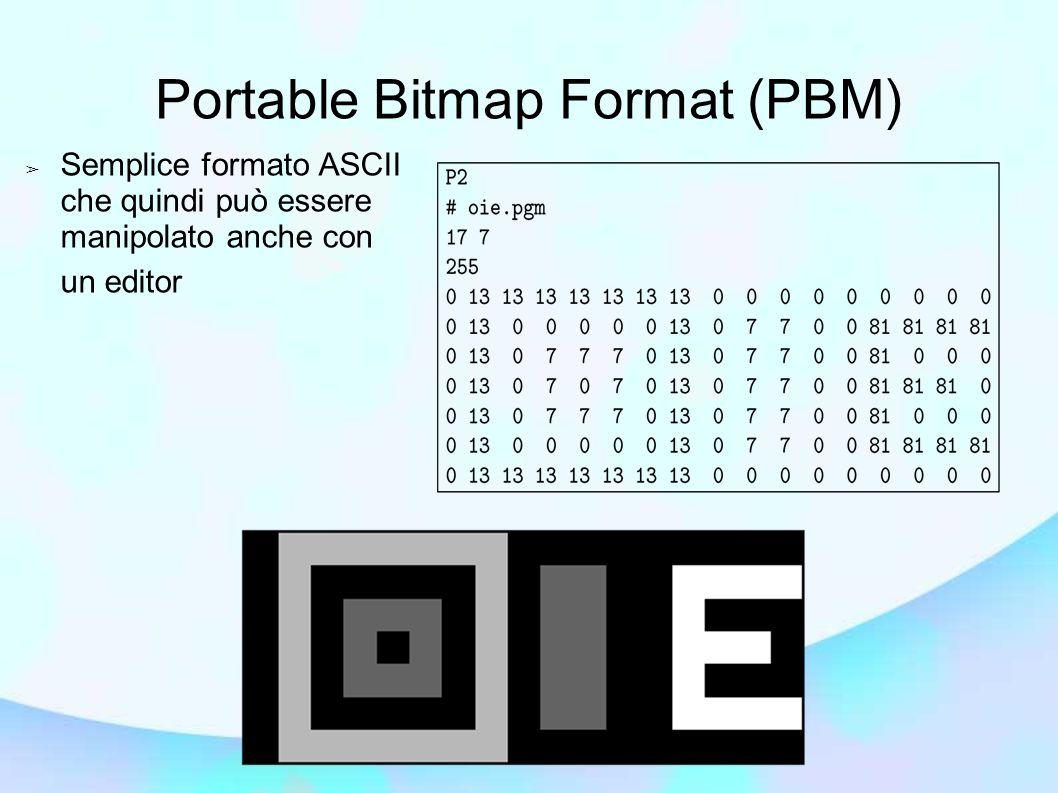 ➢ Semplice formato ASCII che quindi può essere manipolato anche con un editor Portable Bitmap Format (PBM)