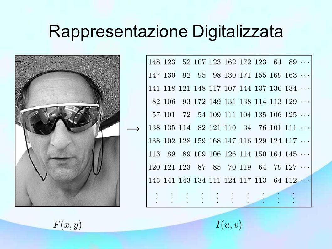 Rappresentazione Digitalizzata