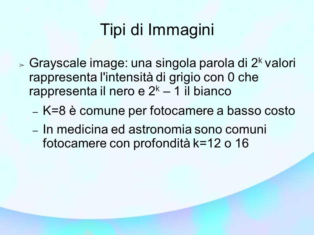 Tipi di Immagini ➢ Grayscale image: una singola parola di 2 k valori rappresenta l intensità di grigio con 0 che rappresenta il nero e 2 k – 1 il bianco – K=8 è comune per fotocamere a basso costo – In medicina ed astronomia sono comuni fotocamere con profondità k=12 o 16