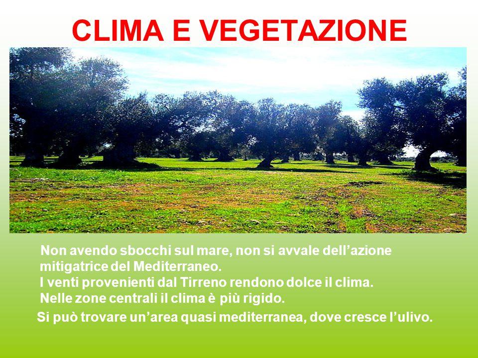 CLIMA E VEGETAZIONE Non avendo sbocchi sul mare, non si avvale dell'azione mitigatrice del Mediterraneo. I venti provenienti dal Tirreno rendono dolce