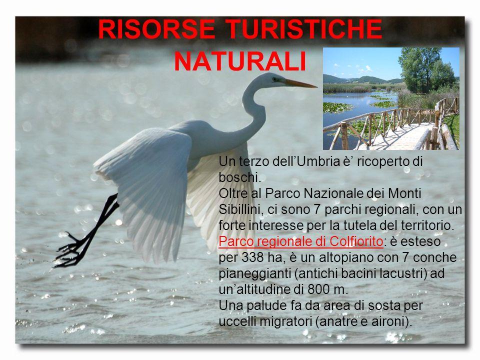 RISORSE TURISTICHE NATURALI Un terzo dell'Umbria è' ricoperto di boschi. Oltre al Parco Nazionale dei Monti Sibillini, ci sono 7 parchi regionali, con