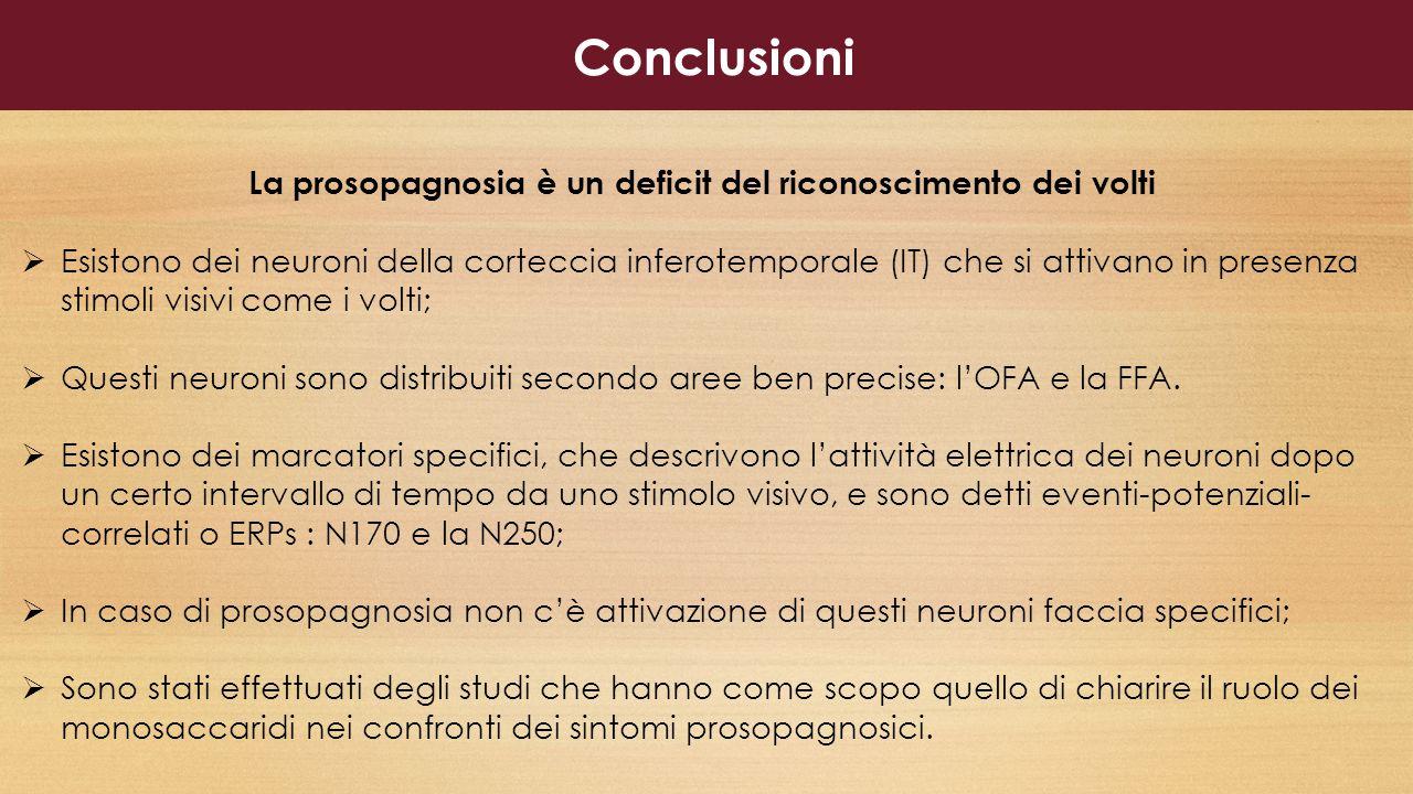 Conclusioni La prosopagnosia è un deficit del riconoscimento dei volti  Esistono dei neuroni della corteccia inferotemporale (IT) che si attivano in presenza stimoli visivi come i volti;  Questi neuroni sono distribuiti secondo aree ben precise: l'OFA e la FFA.