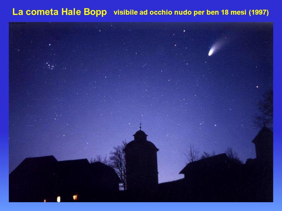 La cometa Halley fotografata frontalmente dalla sonda Giotto Il sistema solare è interamente abbracciato da una fascia di corpi celesti ghiac- ciati chiamata la Città delle Comete .