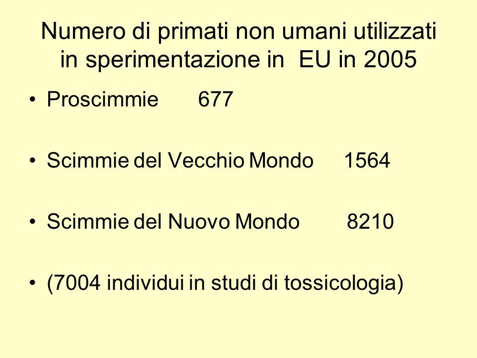 Numero di primati non umani utilizzati in sperimentazione in EU in 2005 Proscimmie 677 Scimmie del Vecchio Mondo 1564 Scimmie del Nuovo Mondo 8210 (7004 individui in studi di tossicologia)