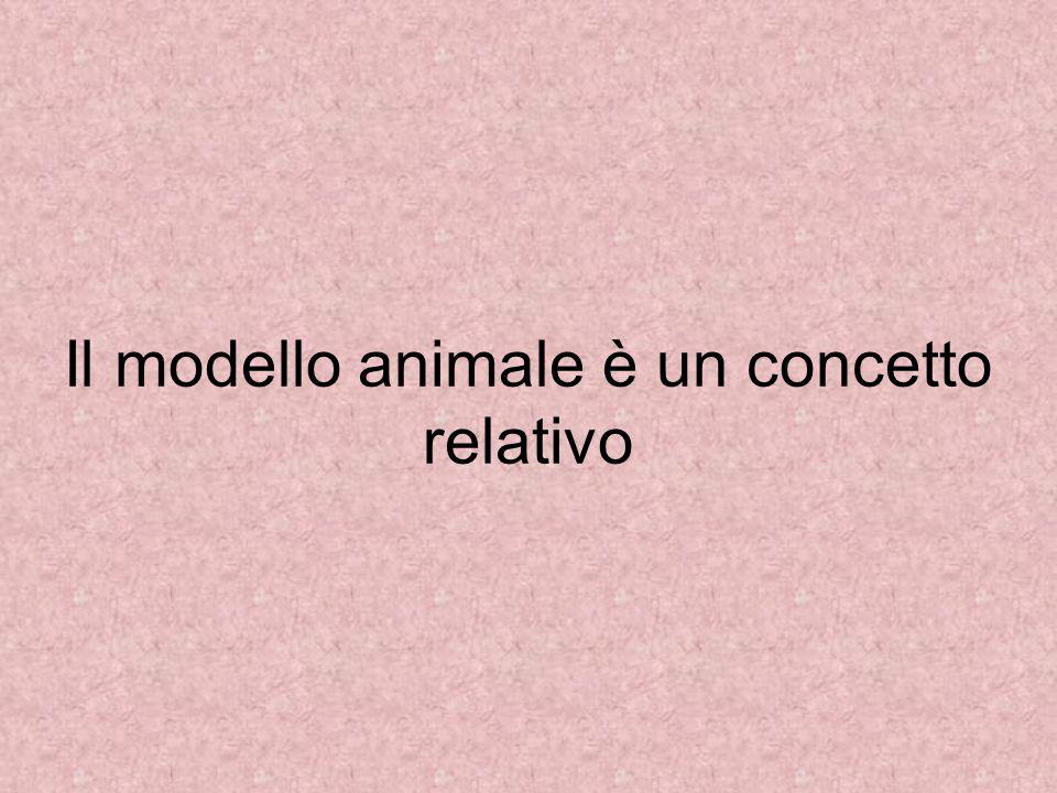 Il modello animale è un concetto relativo