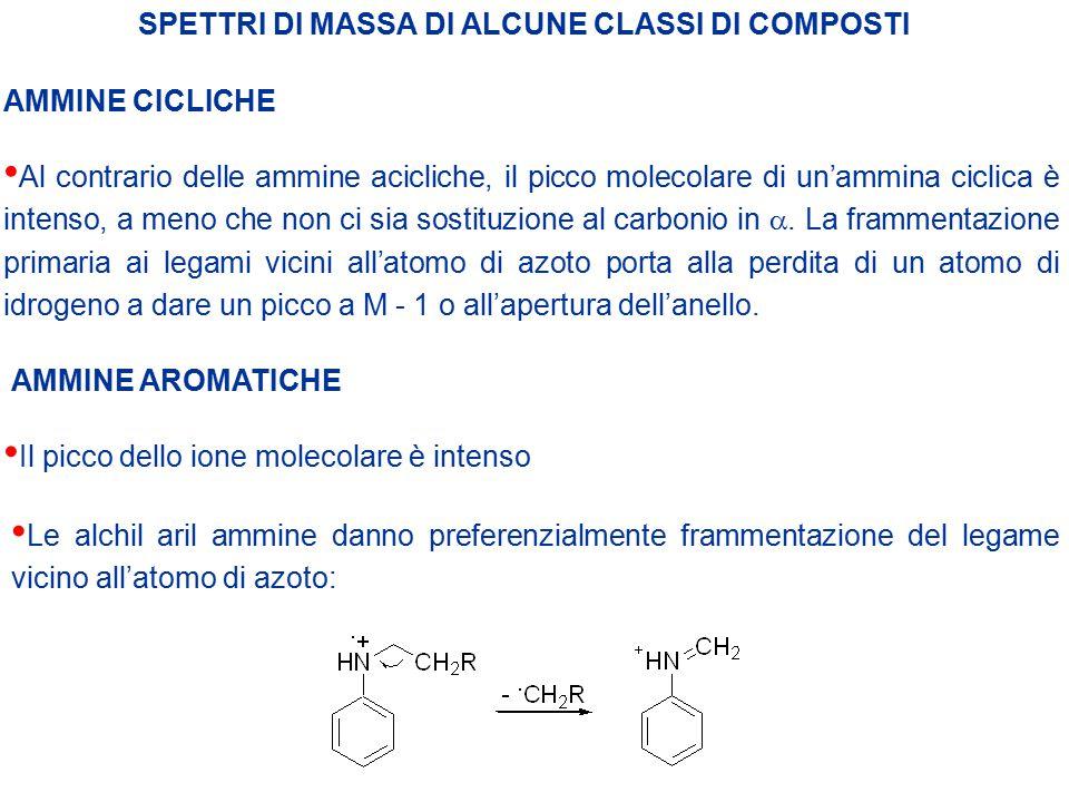 SPETTRI DI MASSA DI ALCUNE CLASSI DI COMPOSTI AMMINE CICLICHE Al contrario delle ammine acicliche, il picco molecolare di un'ammina ciclica è intenso,