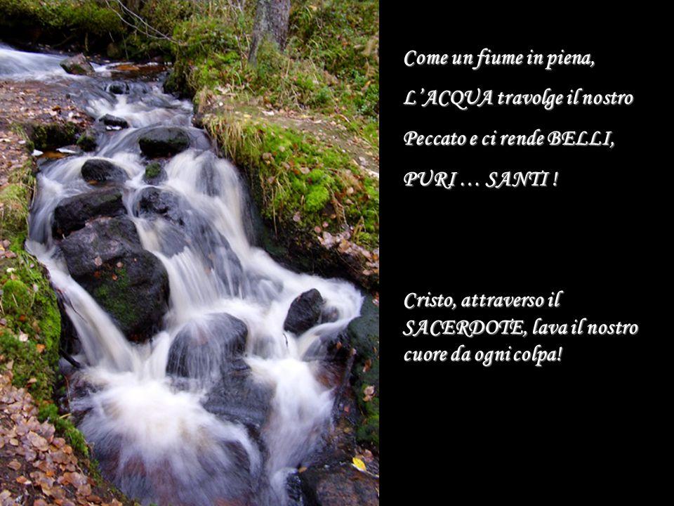 Come un fiume in piena, L'ACQUA travolge il nostro Peccato e ci rende BELLI, PURI … SANTI ! Cristo, attraverso il SACERDOTE, lava il nostro cuore da o