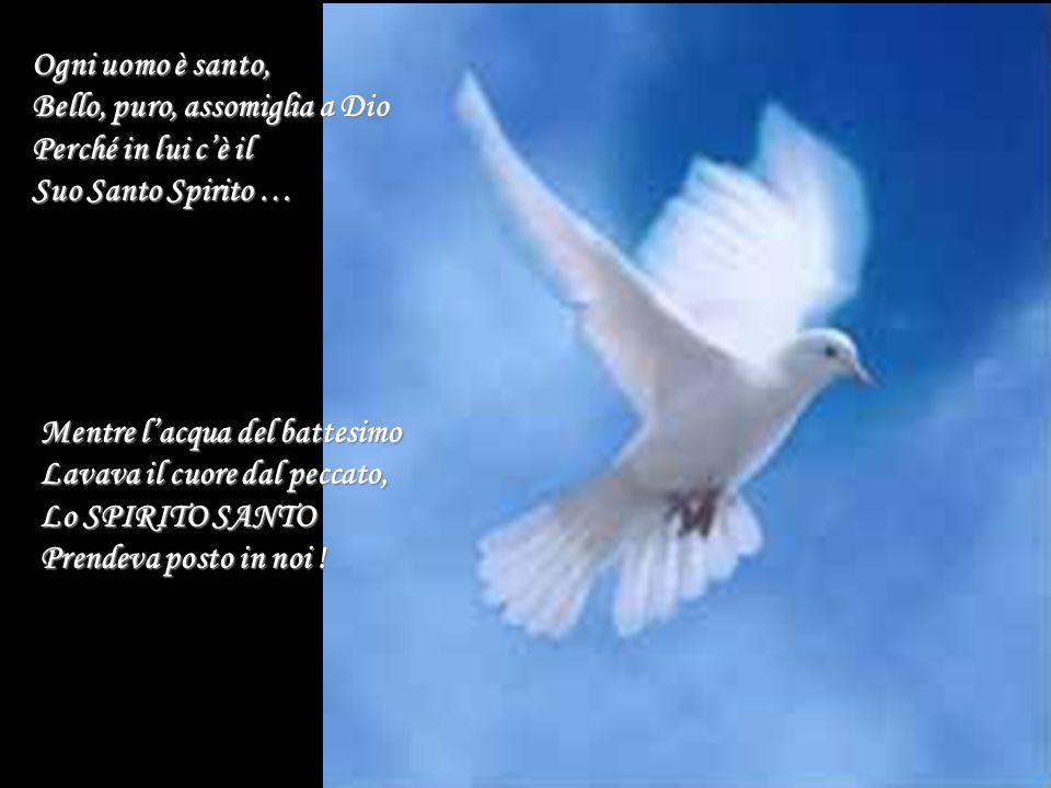 Ogni uomo è santo, Bello, puro, assomiglia a Dio Perché in lui c'è il Suo Santo Spirito … Mentre l'acqua del battesimo Lavava il cuore dal peccato, Lo