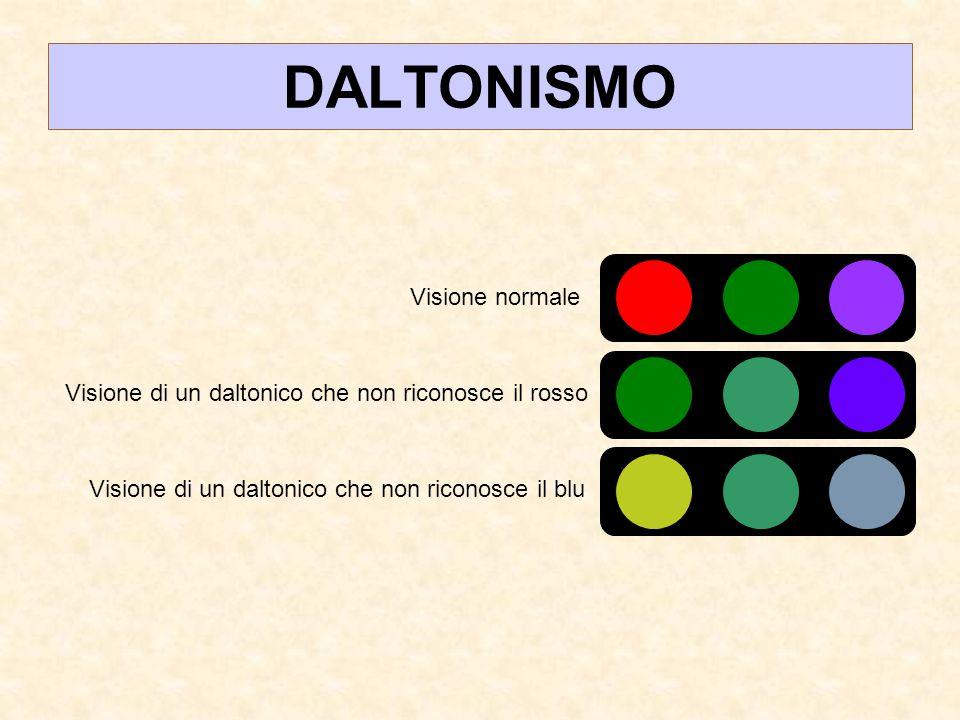 DALTONISMO Visione normale Visione di un daltonico che non riconosce il rosso Visione di un daltonico che non riconosce il blu
