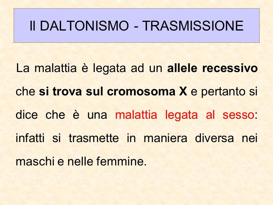 Il DALTONISMO - TRASMISSIONE La malattia è legata ad un allele recessivo che si trova sul cromosoma X e pertanto si dice che è una malattia legata al