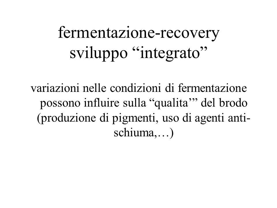 """fermentazione-recovery sviluppo """"integrato"""" variazioni nelle condizioni di fermentazione possono influire sulla """"qualita'"""" del brodo (produzione di pi"""