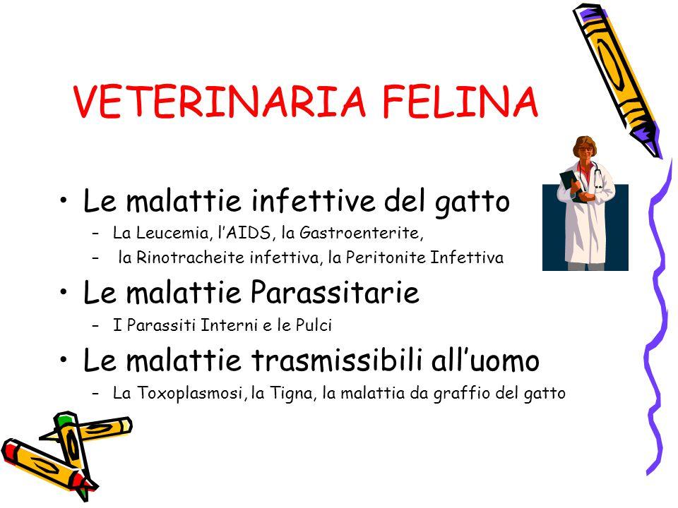 VETERINARIA FELINA Le malattie infettive del gatto –La Leucemia, l'AIDS, la Gastroenterite, – la Rinotracheite infettiva, la Peritonite Infettiva Le m