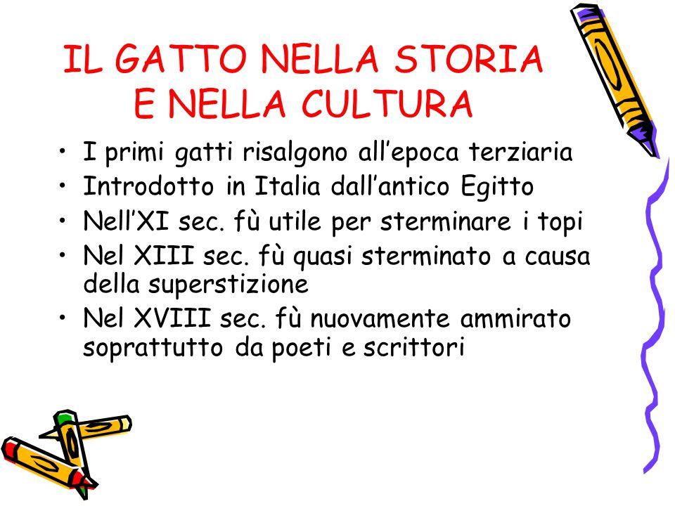 IL GATTO NELLA STORIA E NELLA CULTURA I primi gatti risalgono all'epoca terziaria Introdotto in Italia dall'antico Egitto Nell'XI sec. fù utile per st