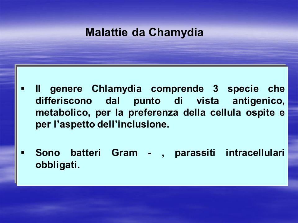 Malattie da Chamydia   Il genere Chlamydia comprende 3 specie che differiscono dal punto di vista antigenico, metabolico, per la preferenza della ce